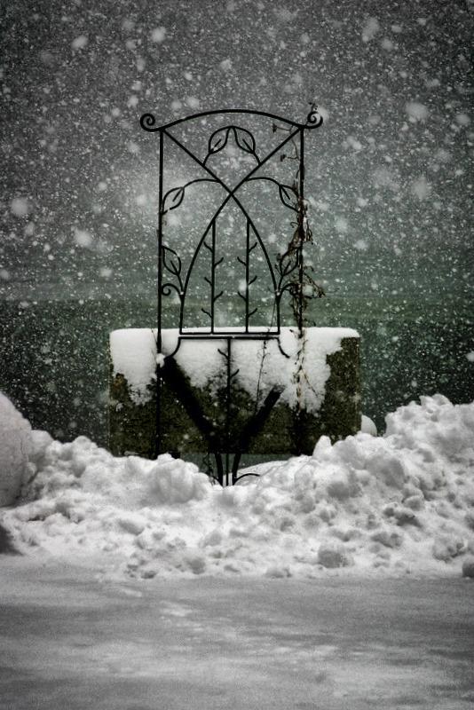 Snow Trellis