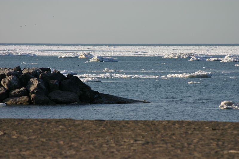 Iceburgs 046