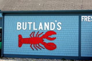 Buttlands-1